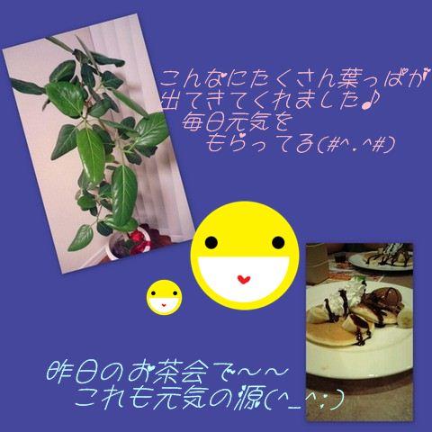 b0166327_705940.jpg