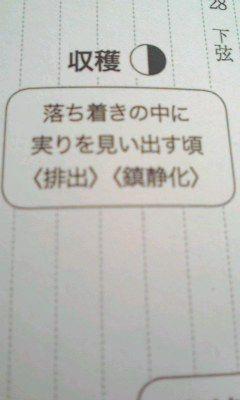 f0164842_1152286.jpg