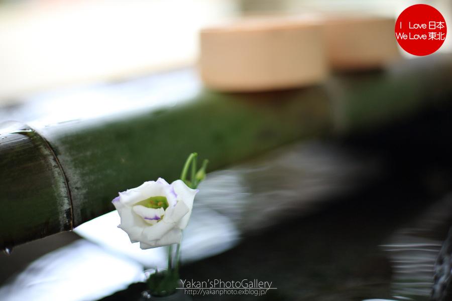 上市町大岩山日石寺 ~大岩そうめん金龍さん~_b0157849_2353380.jpg