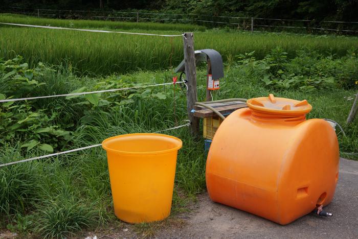 除草剤と鹿よけ_c0182775_20255985.jpg