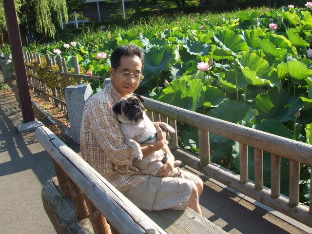 千秋公園(せんしゅう)の蓮の花_f0019498_21353867.jpg