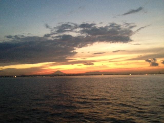 イルカの棲む島2012 御蔵島より③_e0015223_2223763.jpg