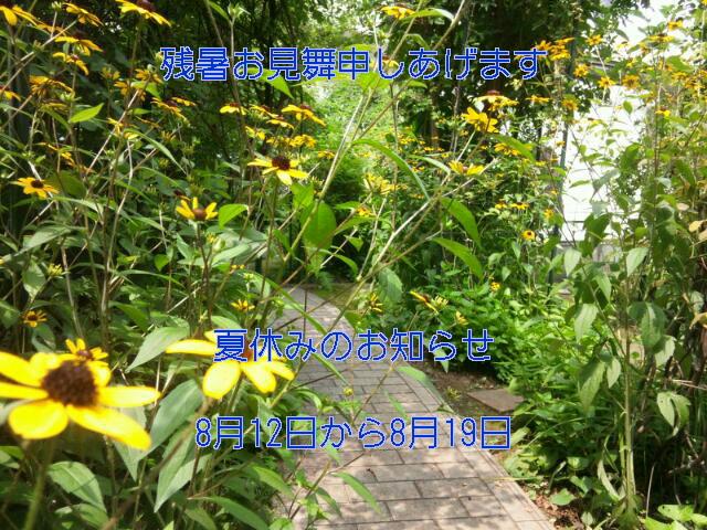b0089559_20265918.jpg