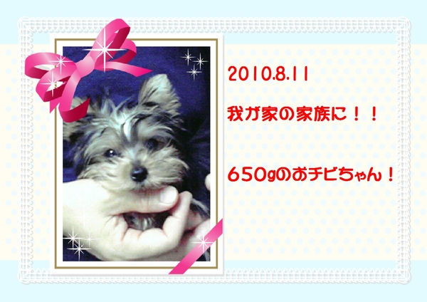 a0246179_6483295.jpg