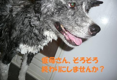 f0121712_17192011.jpg