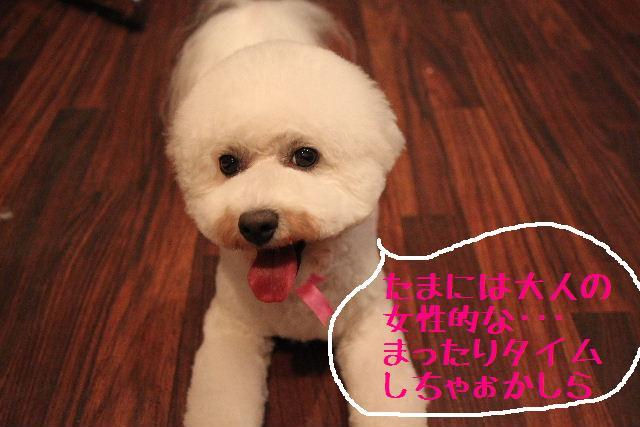 楽しかったぁ~!!_b0130018_0172518.jpg