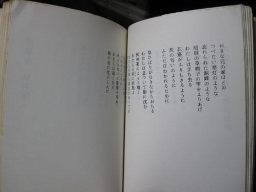 b0081843_1946486.jpg