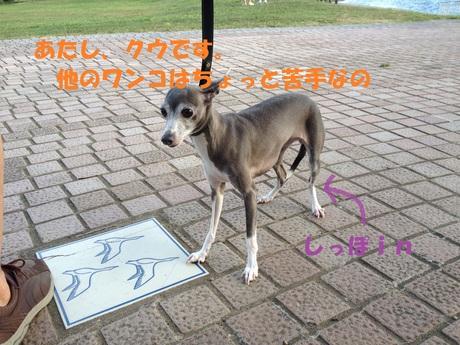 f0223972_2219760.jpg
