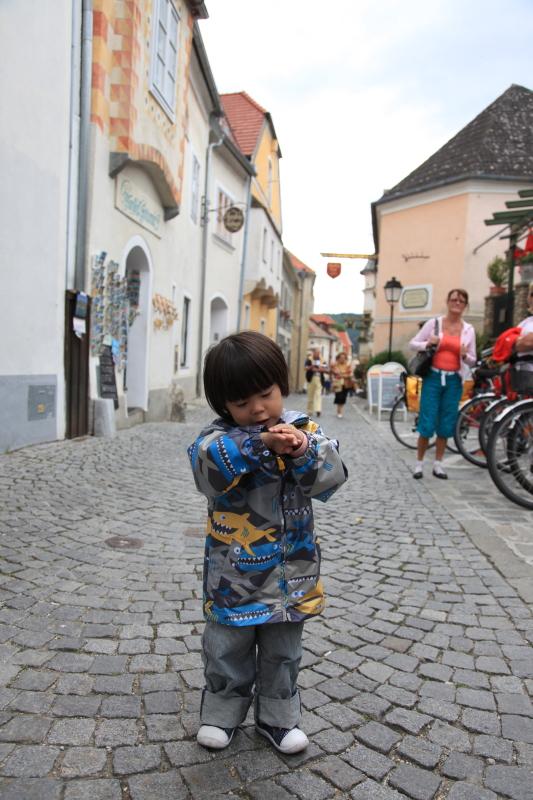 中世の町並みデュルンシュタイン_c0187779_6433345.jpg