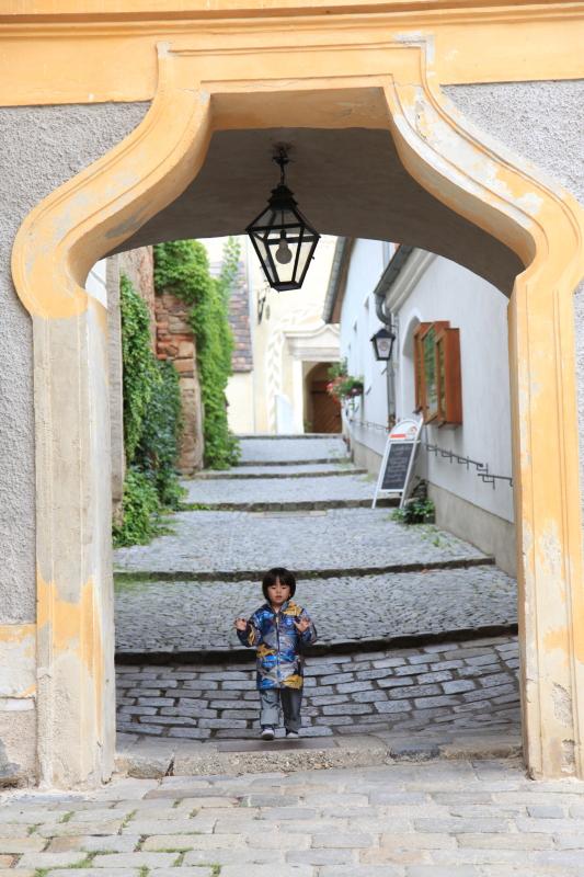 中世の町並みデュルンシュタイン_c0187779_7475454.jpg