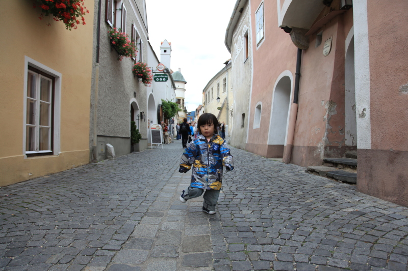 中世の町並みデュルンシュタイン_c0187779_8185168.jpg