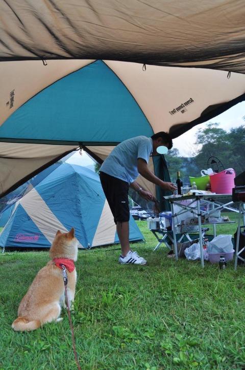 戸隠キャンプ2012  初日_a0126590_9184640.jpg