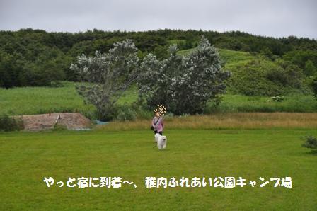 f0212597_2219163.jpg