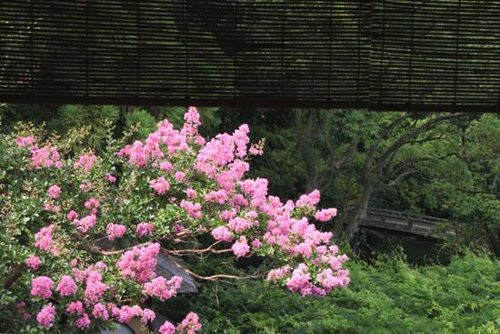 京都御苑 拾翠亭_e0048413_23202245.jpg