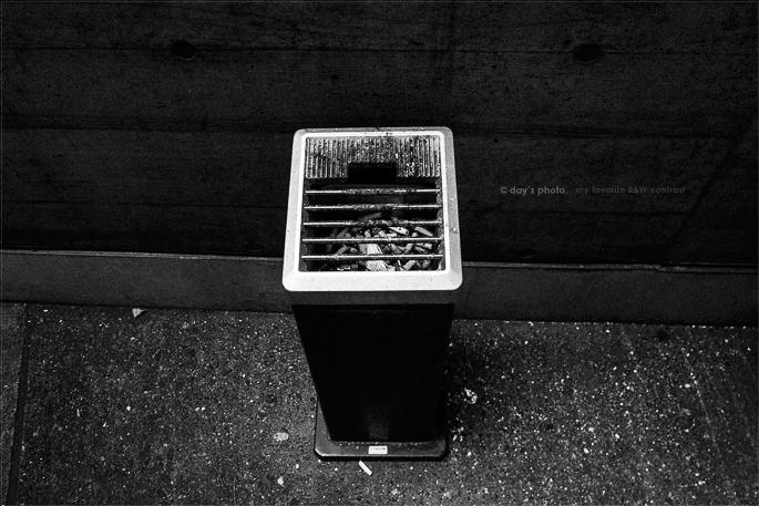 ひたすら暑かった…_e0117517_049039.jpg