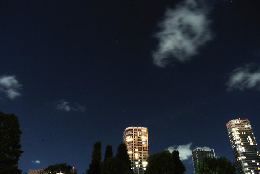 夜の上野動物園から見た星たち_e0089232_13524941.jpg