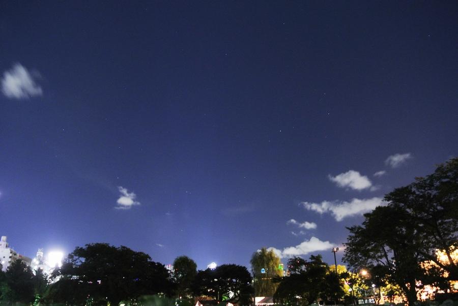 夜の上野動物園から見た星たち_e0089232_13532251.jpg