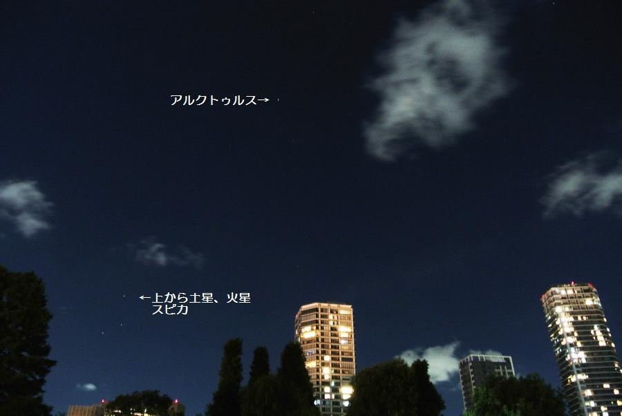 夜の上野動物園から見た星たち_e0089232_1353278.jpg