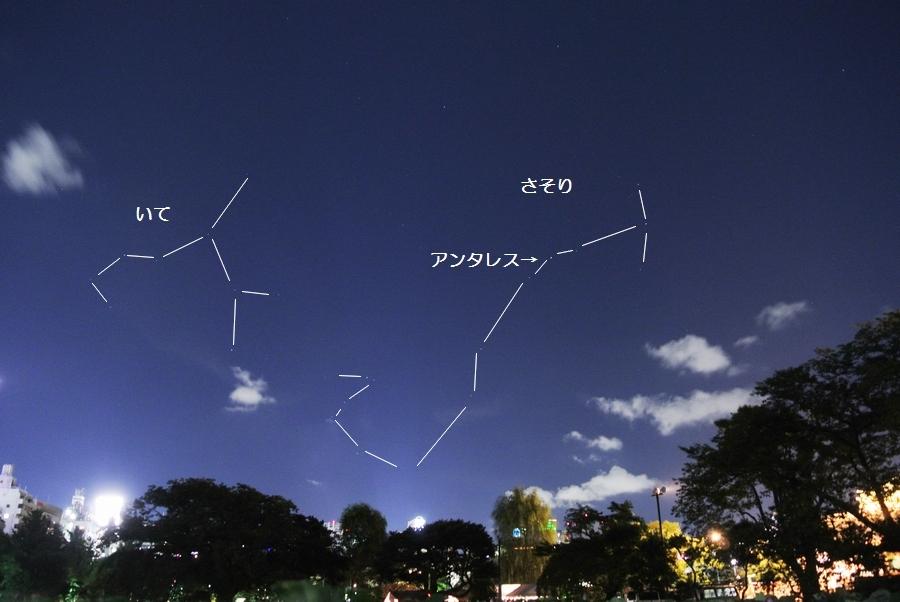 夜の上野動物園から見た星たち_e0089232_13533467.jpg