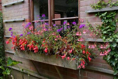 Whichford  potに出会える場所in England_d0229351_18105994.jpg