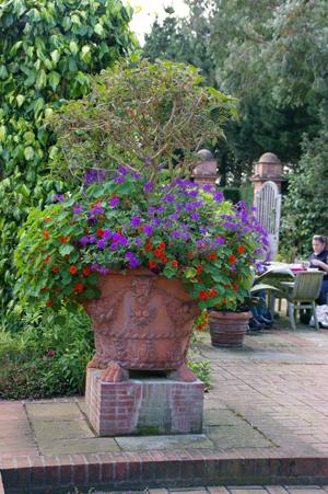 Whichford  potに出会える場所in England_d0229351_1813098.jpg
