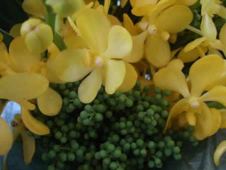 オークリーフ(黄色いモカラの花束)_f0049672_16434144.jpg