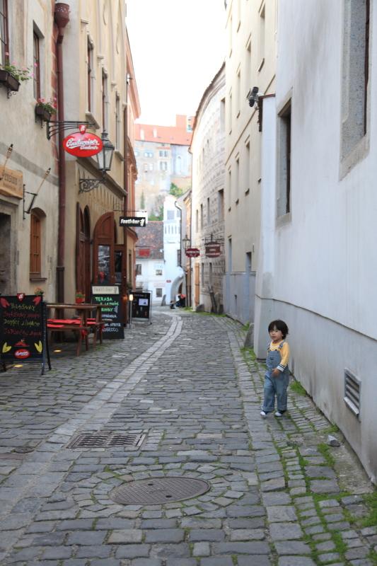 チェスキークルムロフの旧市街_c0187779_715475.jpg