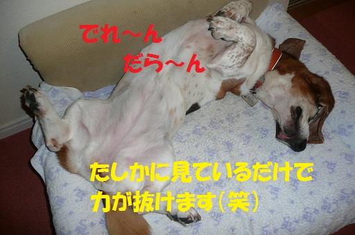 f0121712_1656733.jpg