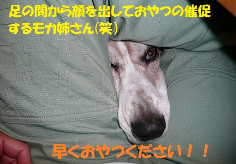 f0121712_1725417.jpg