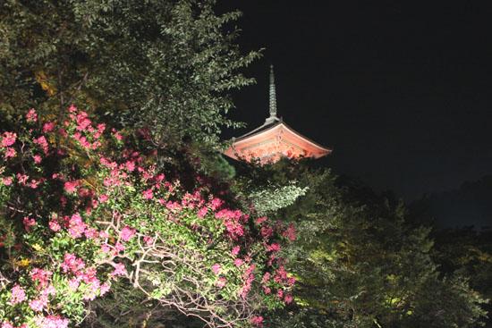 清水寺 千日詣り_e0048413_232051.jpg