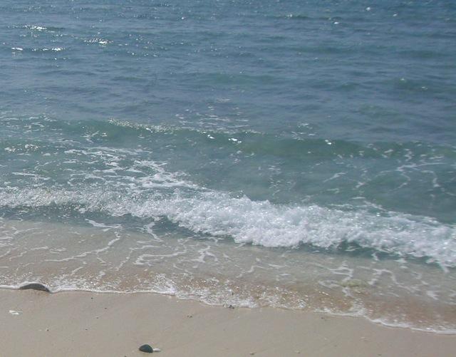 久高島より「神の土地」_b0181015_16592528.jpg
