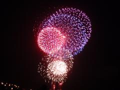 ☆再掲  「原発」新潟県民投票 署名・受任者登録のお願い_d0235522_11373535.jpg