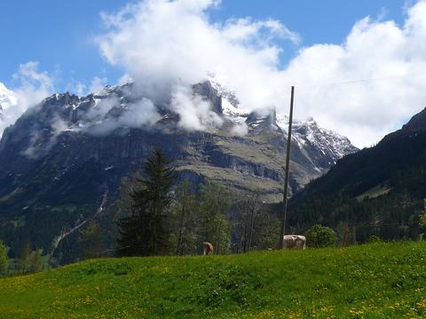 ドイツ・スイス・パリ旅行記5日目-2_e0237625_0572336.jpg