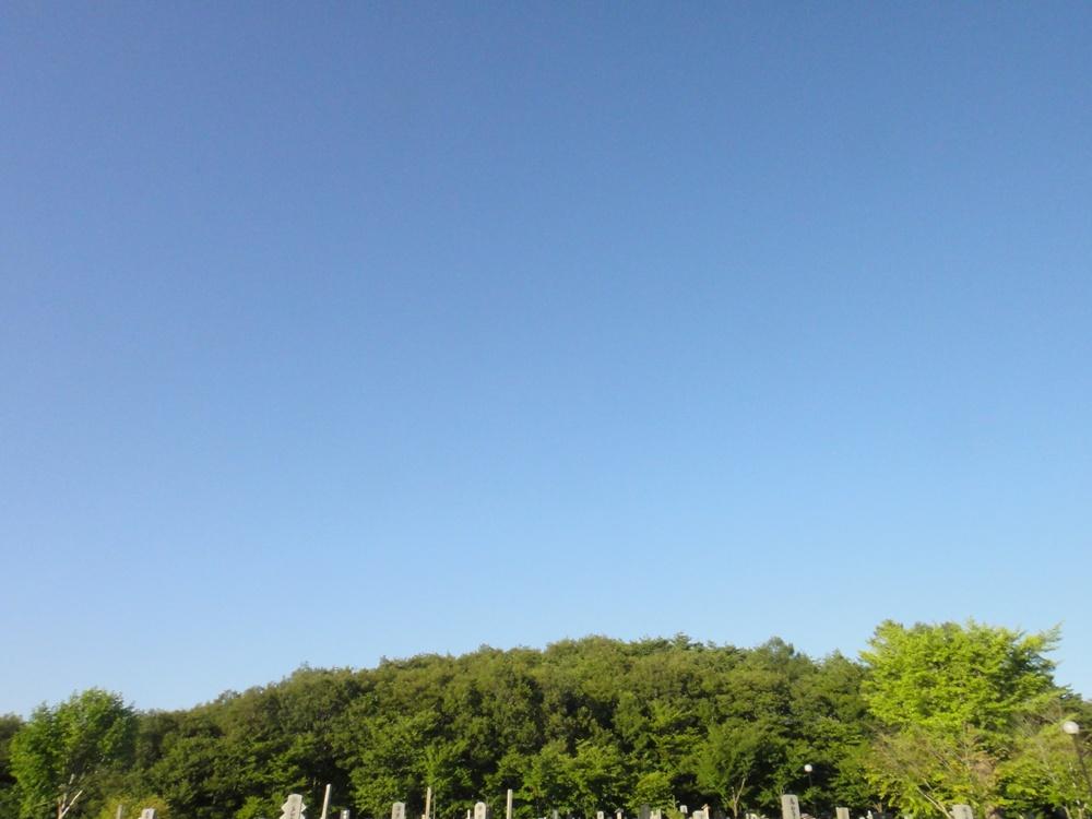 盆悔やみと撮り鉄_c0111229_1824334.jpg