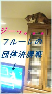 c0076330_136815.jpg
