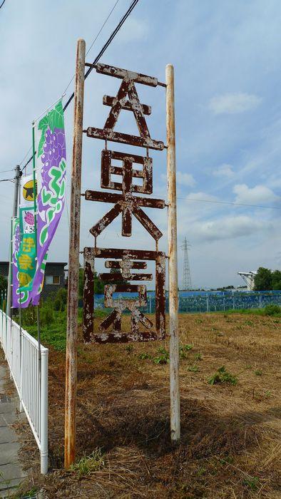 ぶどうを求めて「五果園」さん  (滋賀県東近江市)_d0108737_1425889.jpg