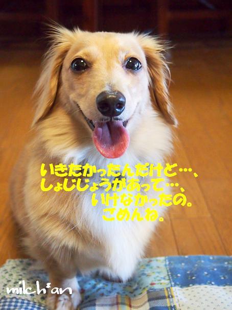 b0115642_1019306.jpg