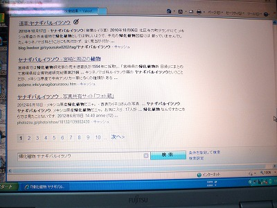 c0180460_2453329.jpg