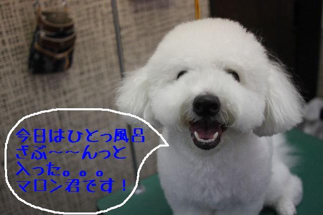 おはよぉ~ございます!!_b0130018_9194217.jpg