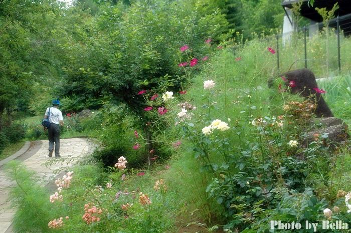 ハイジの村へ行って来ました_f0012718_1553458.jpg