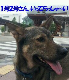 b0207320_17224989.jpg