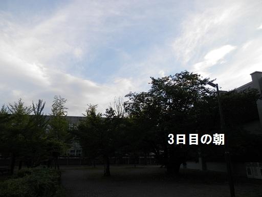 b0226221_11515034.jpg