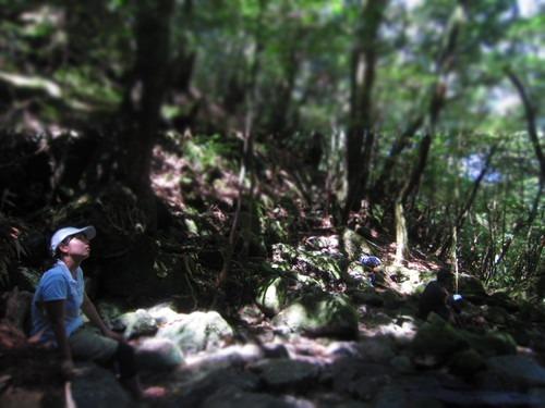 森は涼しい。_b0160957_911562.jpg