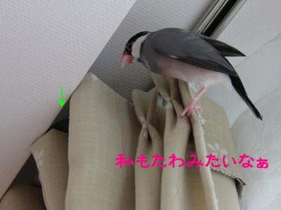 b0158061_1943265.jpg