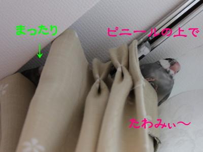 b0158061_19434322.jpg