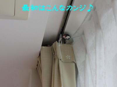 b0158061_19442961.jpg
