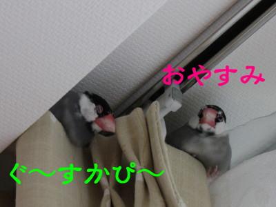 b0158061_19444231.jpg