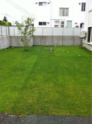 今日の芝生_e0246271_0242435.jpg