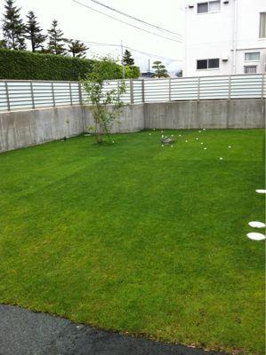 今日の芝生_e0246271_0242497.jpg