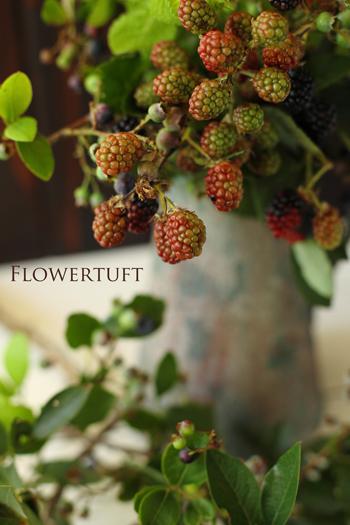 berries!_c0137872_20595130.jpg
